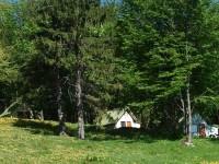 Petits maisons en forêt au bord de la prairie, alors que retentit une chanson de Victor Hugo.