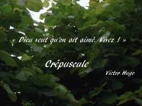 En surimpression, avec le mot « crépuscule » parmi les feuilles d'un arbre, « Dieu veut qu'on ait aimé. Vivez ! » apparaît comme une citation de Victor Hugo.
