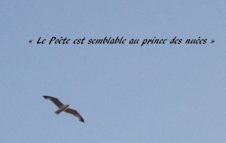 L'albatros – Les Fleurs du mal – Charles Baudelaire