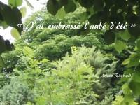 Dans un bosquet verdoyant, à l'aube, apparaît un vers de Rimbaud : «J'ai embrassé l'aube d'été».