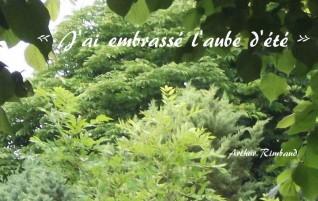 Aube – Illuminations – Arthur Rimbaud
