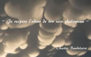 Parfum exotique – Les Fleurs du mal – Charles Baudelaire