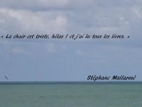Sur un horizon chargé d'une brise marine, apparaît ce vers de Stéphane Mallarmé : « La chair est triste, hélas ! et j'ai lu tous les livres. »