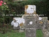 Une croix de granit, avec un cœur sculpté, accompagné d'étoiles, de rosaces, symbolise la beauté et se détache sur un parterre d'herbe verte, avec un rosier en fond sur la gauche. Un vers traverse la croix : « Je suis belle, ô mortels! comme un rêve de pierre » et le nom du poète Charles Baudelaire semble inscrit, en blanc, dans la pierre.