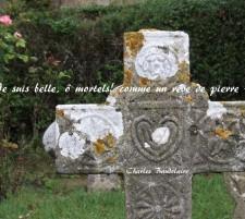 La Beauté – Les Fleurs du mal – Charles Baudelaire