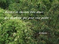 Sur un fond de branches d'arbres apparaissent les vers ; « Écoutez la chanson bien douce / Qui ne pleure que pour vous plaire » ET « Verlaine ».
