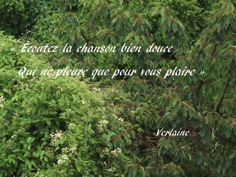 écoutez La Chanson Bien Douce Sagesse Paul Verlaine