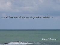 Ligne d'horizon de l'océan calme, avec deux nuances de bleu, dont une presque vert, et, inscrit sur le ciel le vers : «J'ai tant rêvé de toi que tu perds ta réalité.» et en ba à droite, le nom de l'auteur : Robert Desnos.