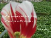 Sur les pétales flous d'une fleur qui occupe le premier plan apparaissent les vers : « De la musique avant toute chose, Et pour cela préfère l'Impair » du poème Art poétique.