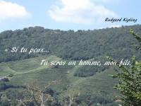 Une colline couverte de vignes et d'arbres avec, inscrit sur ses contreforts : « Si tu peux... Tu seras un homme, mon fils. » et, dans le ciel, à droite, le nom de Rudyard Kipling.